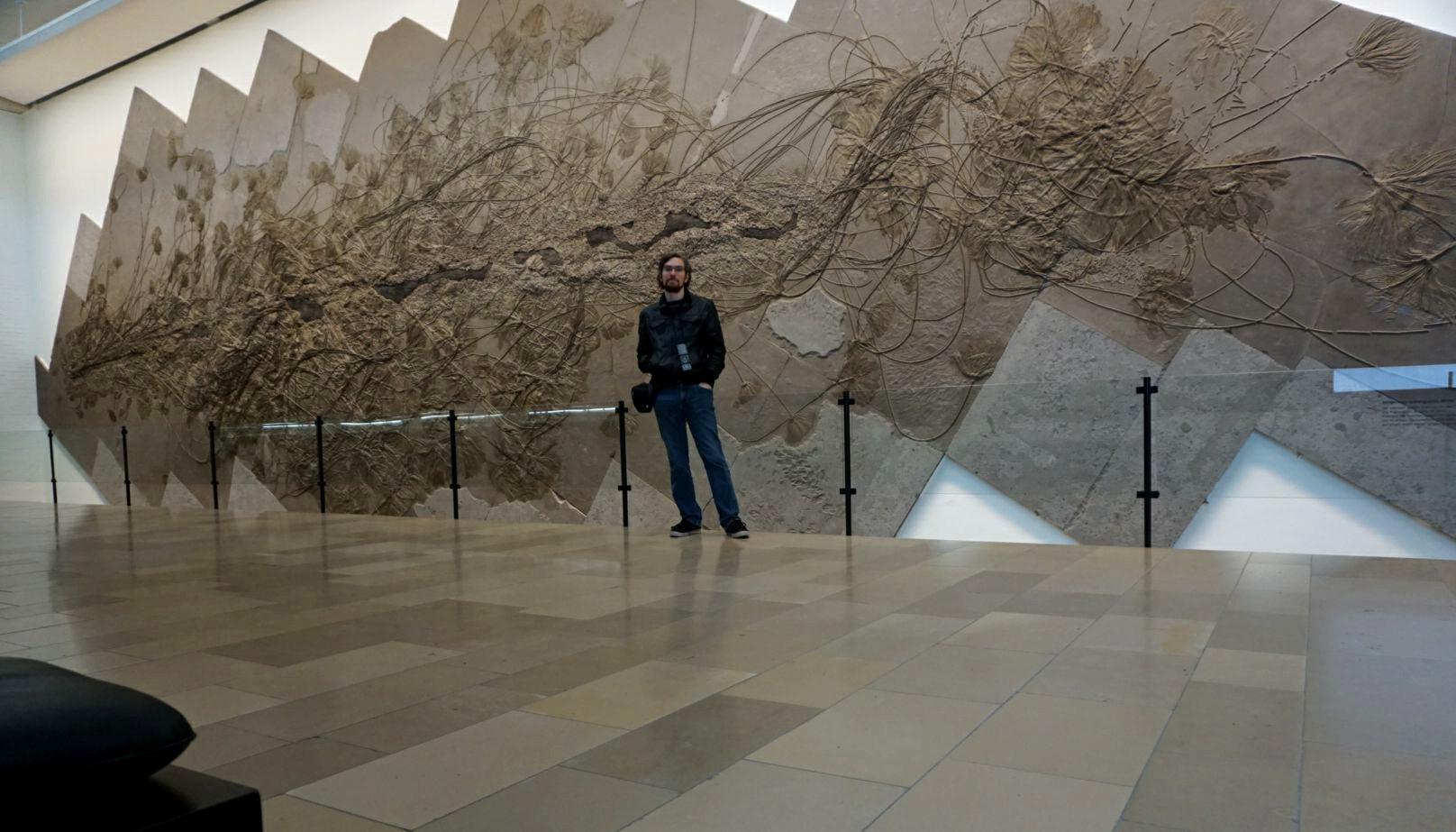 Urweltmuseum hauff